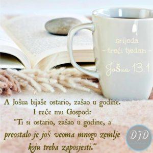 stih-13